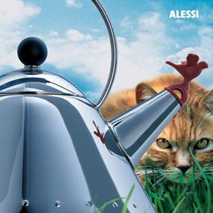 会唱歌的阿莱西小鸟水壶