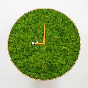 天然绿色苔藓时钟Moss clock