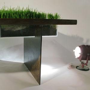中间长草的桌子