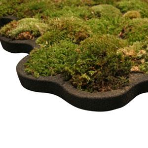 活苔藓防滑沐浴脚垫
