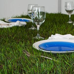 家里的野餐草坪餐桌