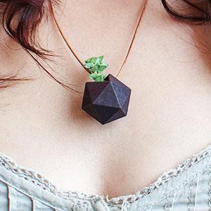 穿在身上的植物